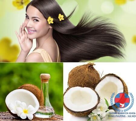 Cách chữa rụng tóc bằng dầu dừa tại nhà hiệu quả