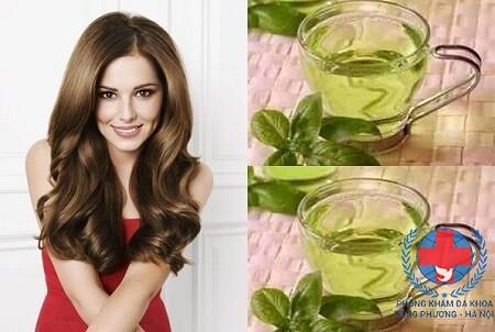 Cách chữa rụng tóc bằng chè xanh hiệu quả