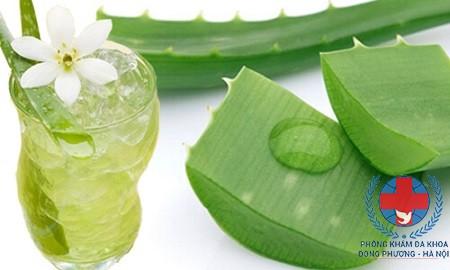 Cách dùng gel lô hội chữa rụng tóc tại nhà đơn giản hiệu quả