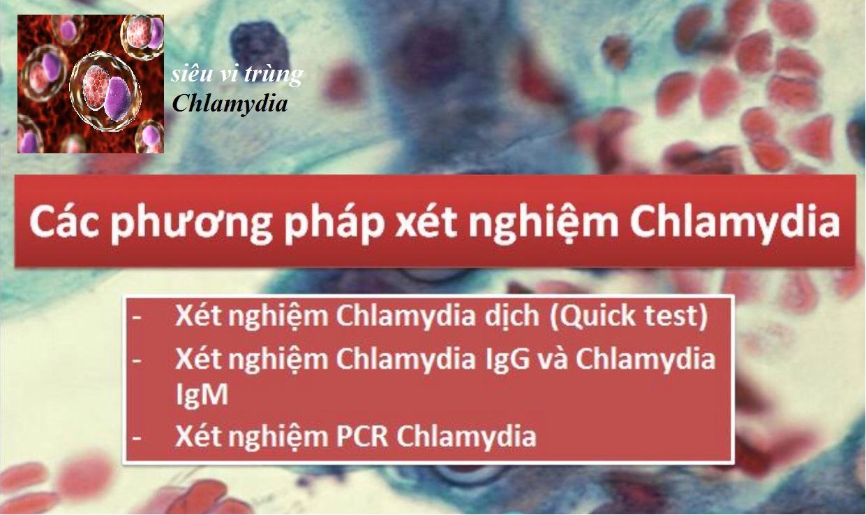 benh-xa-hoi-Chlamydia