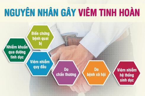 Nguyen Nhan Gay Viem Tinh Hoan